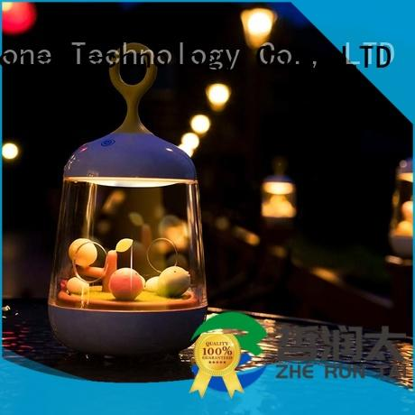 light little lamp Zhe Run Tai Brand silicone light