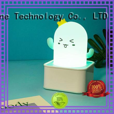 removable Custom lamp night silicone light Zhe Run Tai body